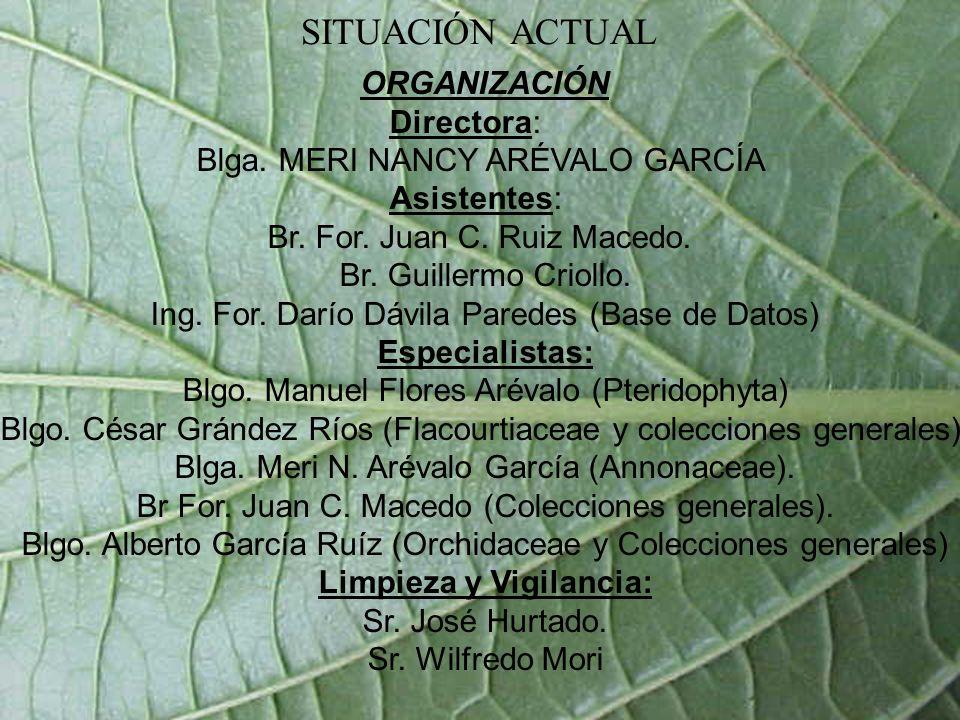 SITUACIÓN ACTUAL ORGANIZACIÓN Directora: