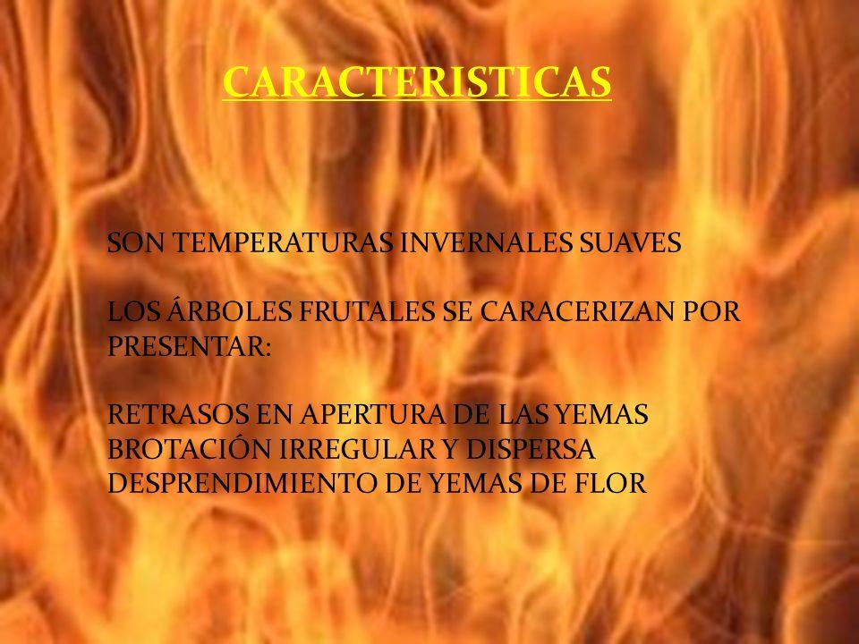 CARACTERISTICAS SON TEMPERATURAS INVERNALES SUAVES