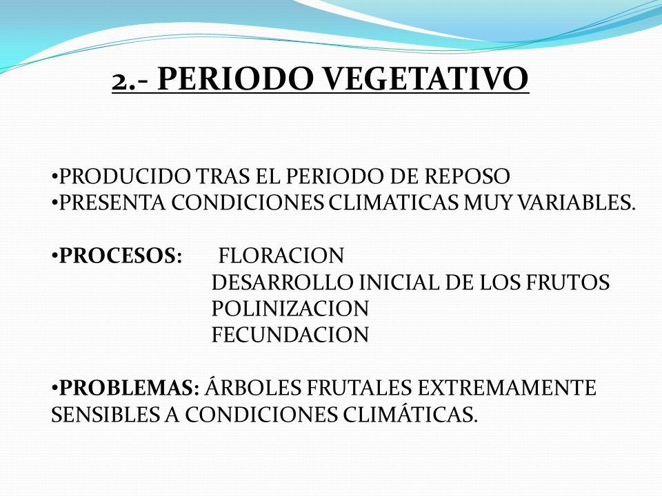 2.- PERIODO VEGETATIVO PRODUCIDO TRAS EL PERIODO DE REPOSO