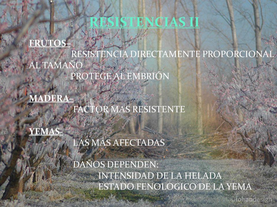 RESISTENCIAS II FRUTOS–