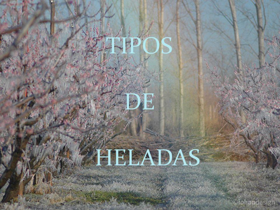TIPOS DE HELADAS TIPOS DE HELADAS