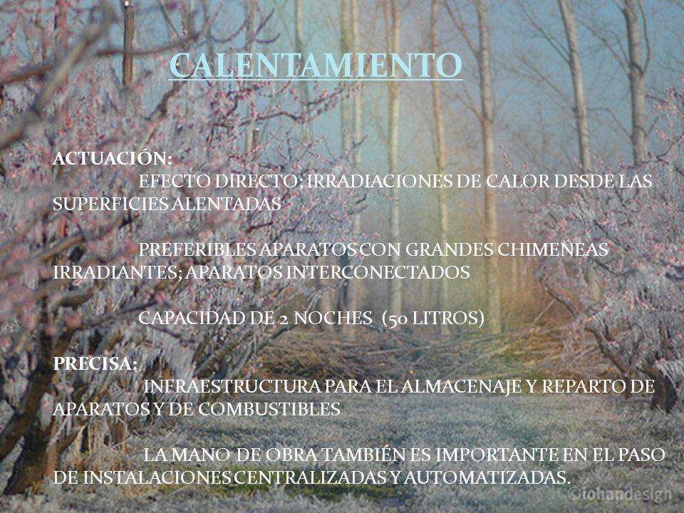 CALENTAMIENTO ACTUACIÓN: