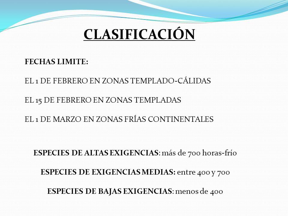 CLASIFICACIÓN FECHAS LIMITE: EL 1 DE FEBRERO EN ZONAS TEMPLADO-CÁLIDAS