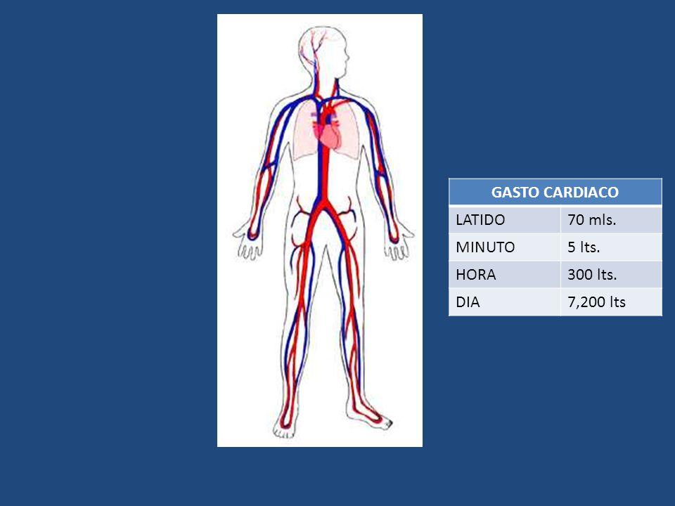 GASTO CARDIACO LATIDO 70 mls. MINUTO 5 lts. HORA 300 lts. DIA 7,200 lts
