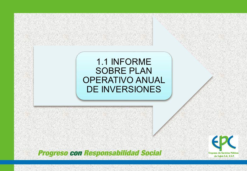 1.1 INFORME SOBRE PLAN OPERATIVO ANUAL DE INVERSIONES