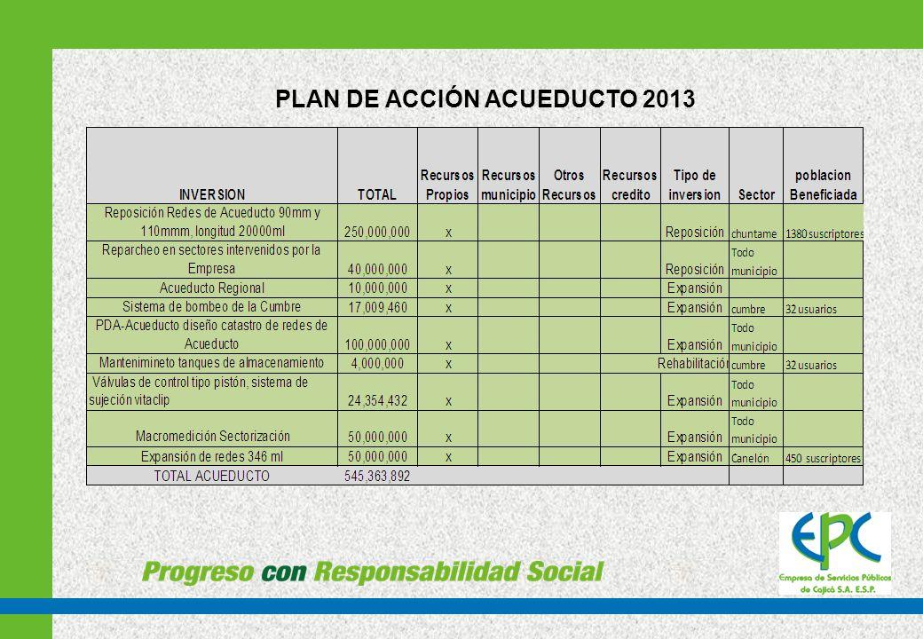 PLAN DE ACCIÓN ACUEDUCTO 2013