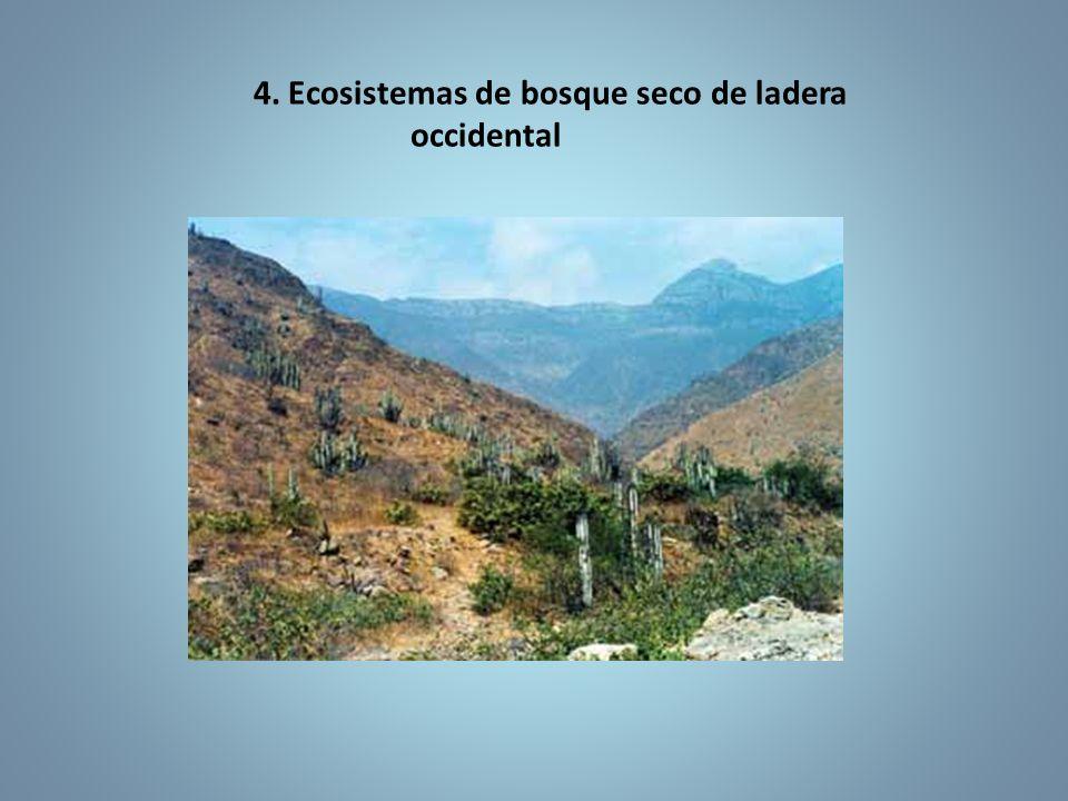 4. Ecosistemas de bosque seco de ladera occidental