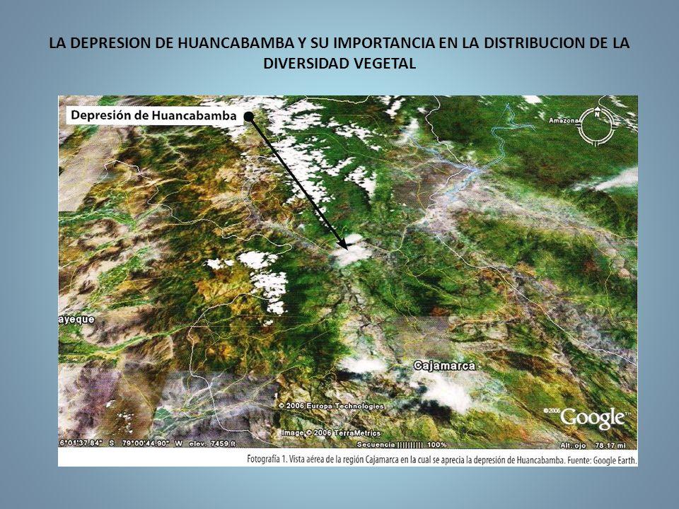 LA DEPRESION DE HUANCABAMBA Y SU IMPORTANCIA EN LA DISTRIBUCION DE LA DIVERSIDAD VEGETAL