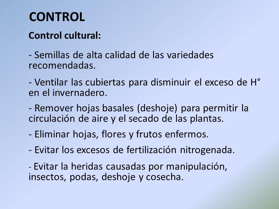 CONTROL Control cultural: