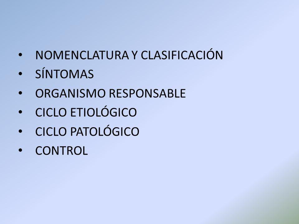 NOMENCLATURA Y CLASIFICACIÓN