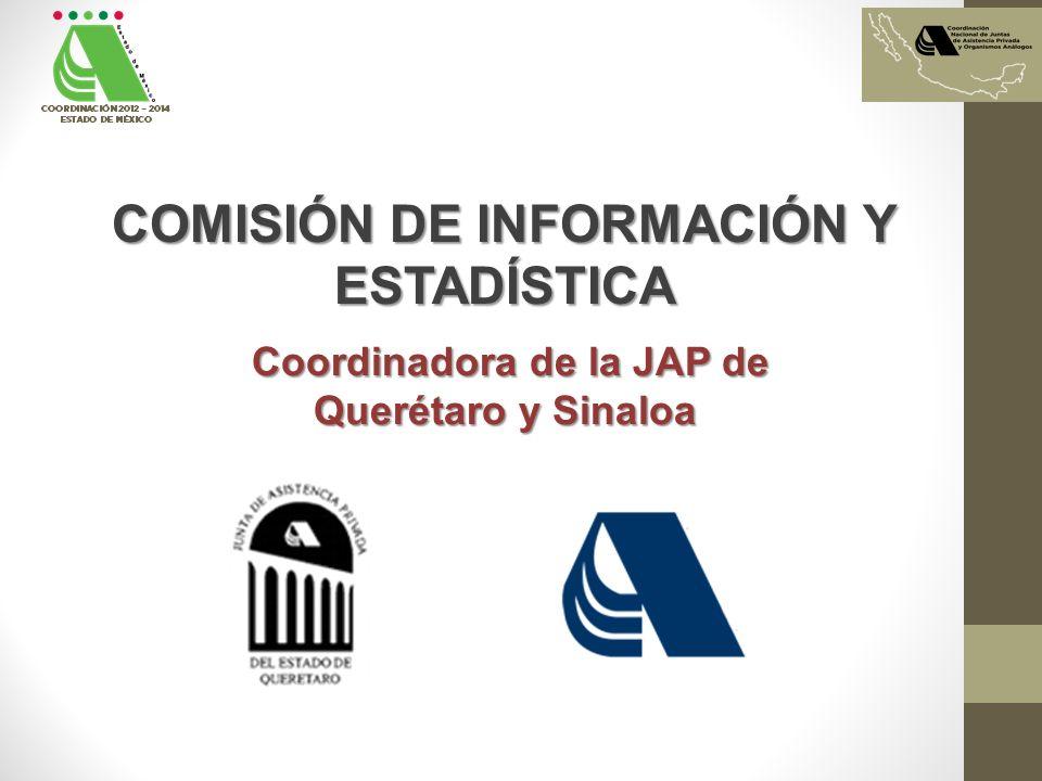 COMISIÓN DE INFORMACIÓN Y ESTADÍSTICA Coordinadora de la JAP de