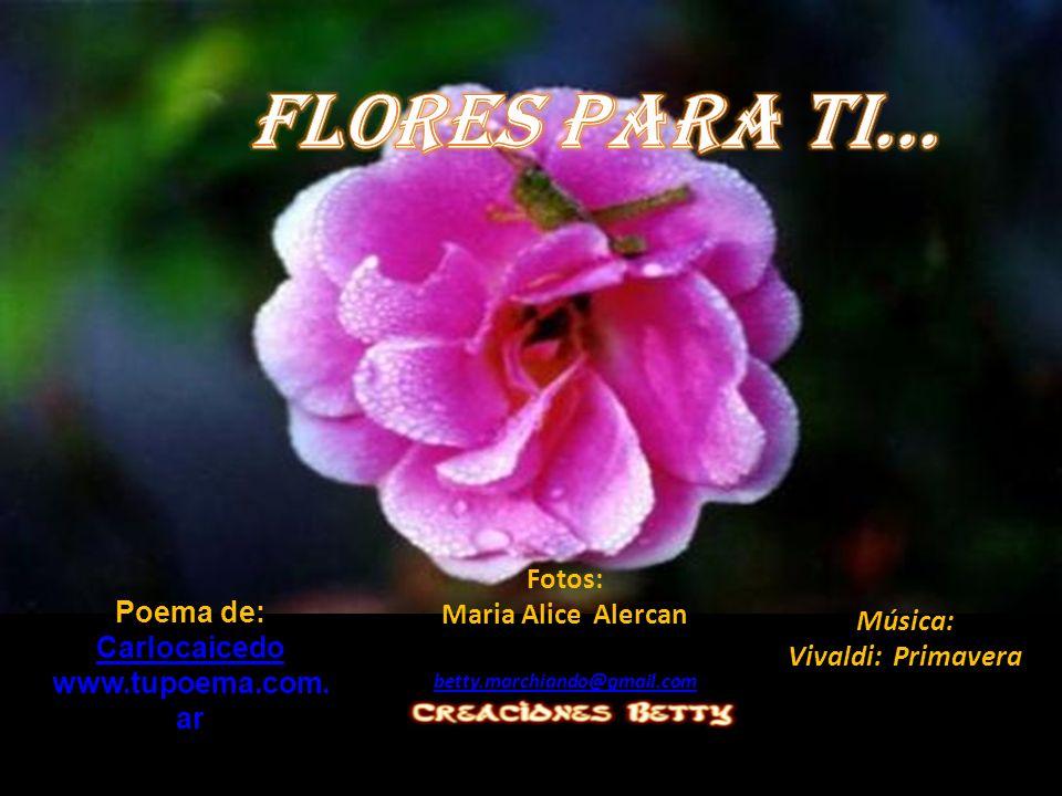 Flores para ti... Fotos: Maria Alice Alercan Poema de: Música: