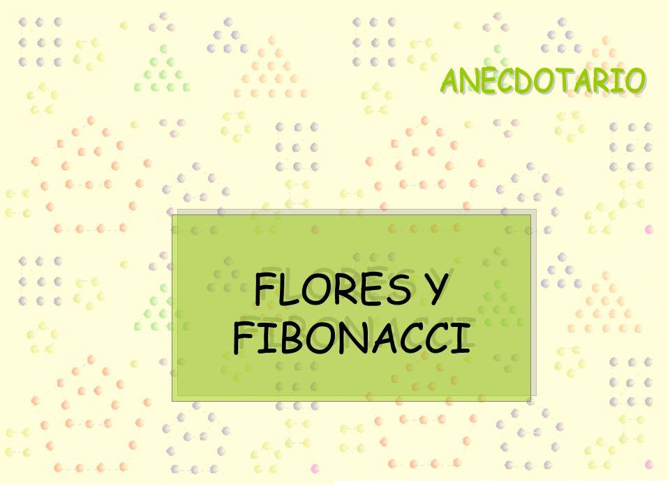 ANECDOTARIO FLORES Y FIBONACCI