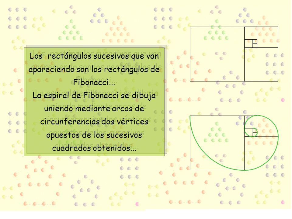 Los rectángulos sucesivos que van apareciendo son los rectángulos de Fibonacci...