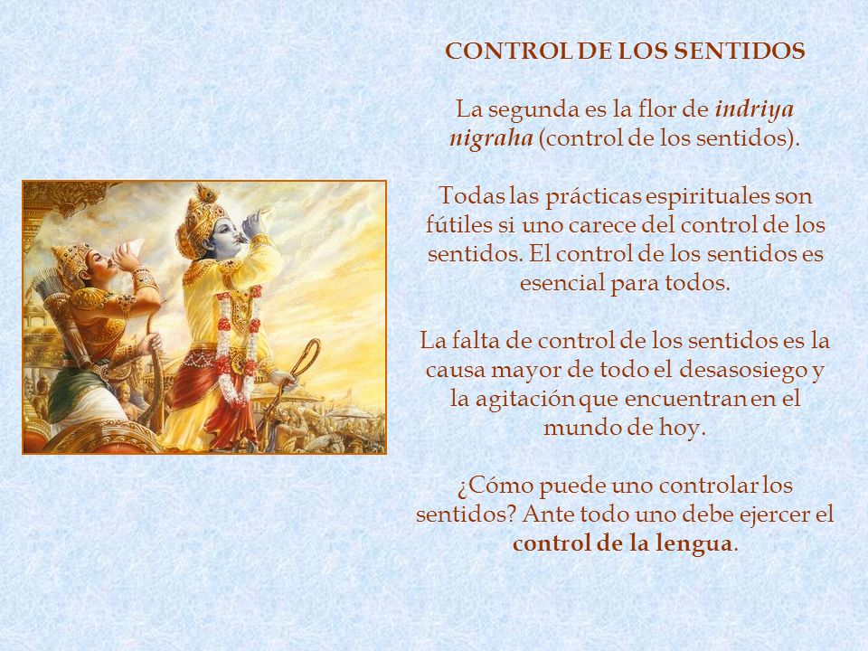 CONTROL DE LOS SENTIDOS