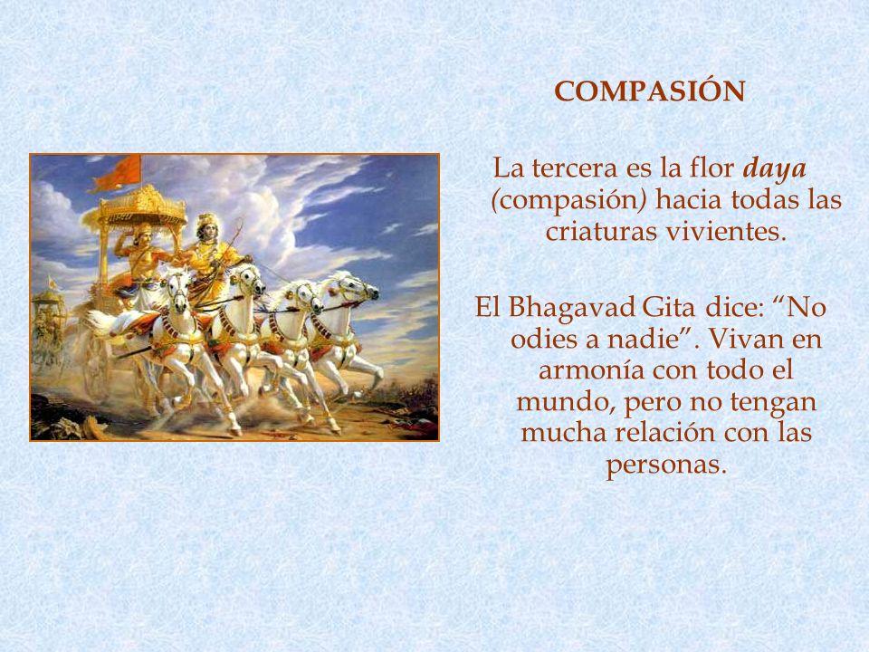 COMPASIÓN La tercera es la flor daya (compasión) hacia todas las criaturas vivientes.