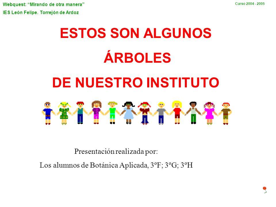 ESTOS SON ALGUNOS ÁRBOLES DE NUESTRO INSTITUTO