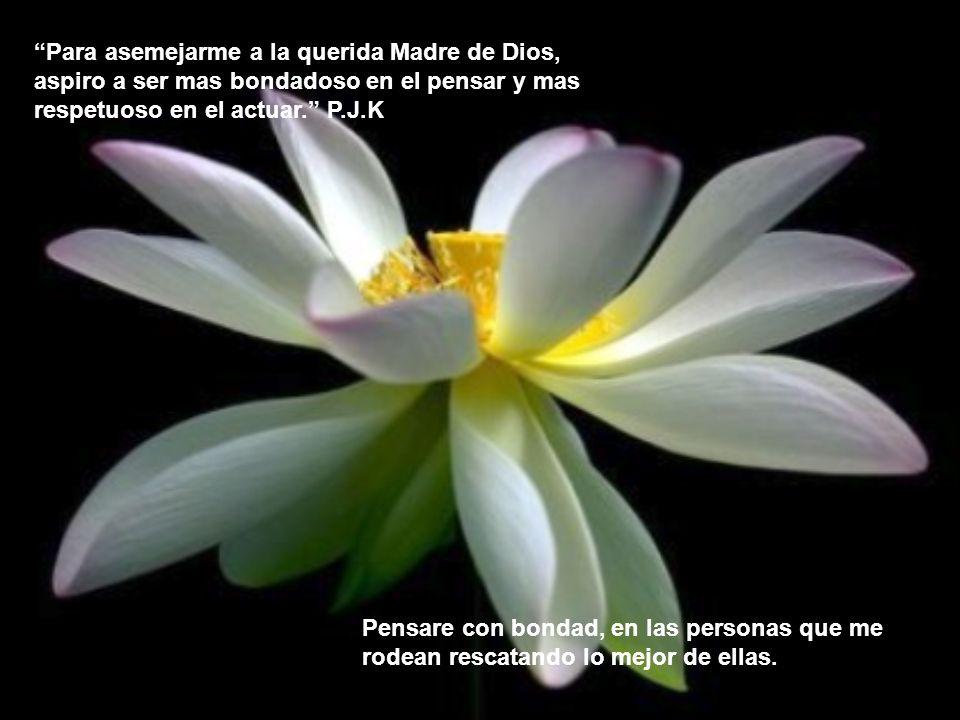 Para asemejarme a la querida Madre de Dios, aspiro a ser mas bondadoso en el pensar y mas respetuoso en el actuar. P.J.K