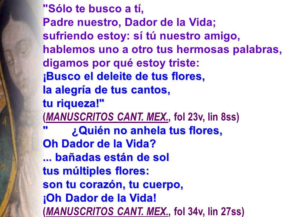 Sólo te busco a tí, Padre nuestro, Dador de la Vida; sufriendo estoy: sí tú nuestro amigo, hablemos uno a otro tus hermosas palabras,