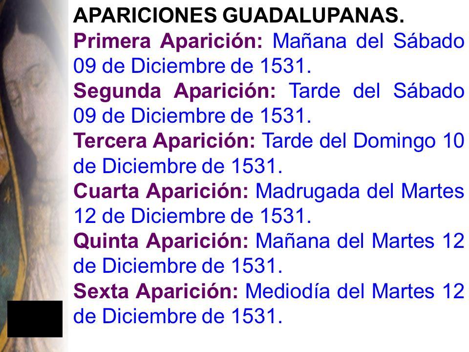 APARICIONES GUADALUPANAS.