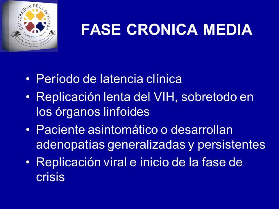 FASE CRONICA MEDIA Período de latencia clínica