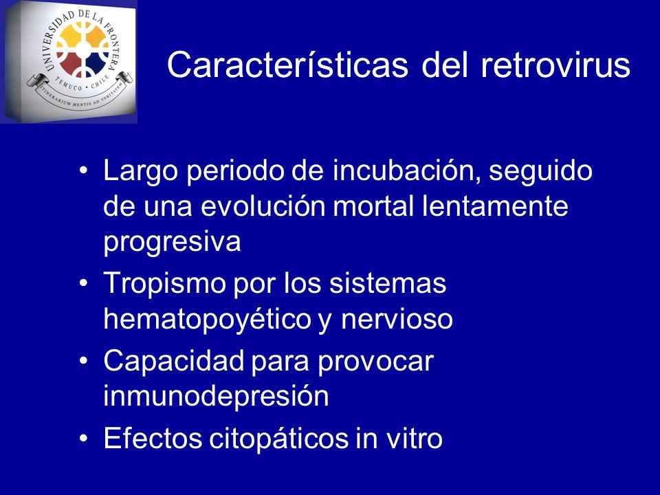 Características del retrovirus