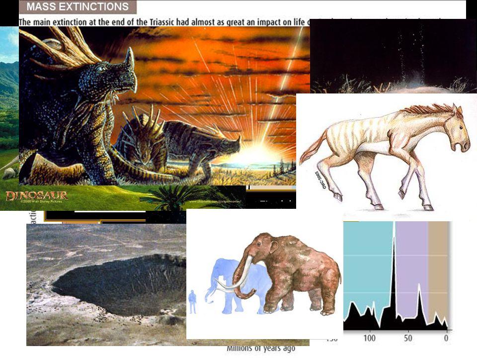 Final del Pérmico Final del Cretácico Final del Ordovícico Final del Triásico Devónico tardío