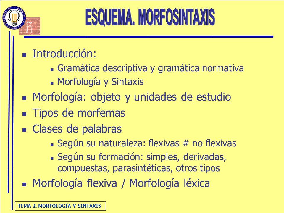 ESQUEMA. MORFOSINTAXIS