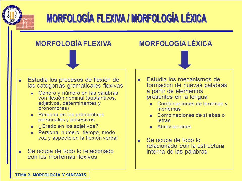 MORFOLOGÍA FLEXIVA / MORFOLOGÍA LÉXICA