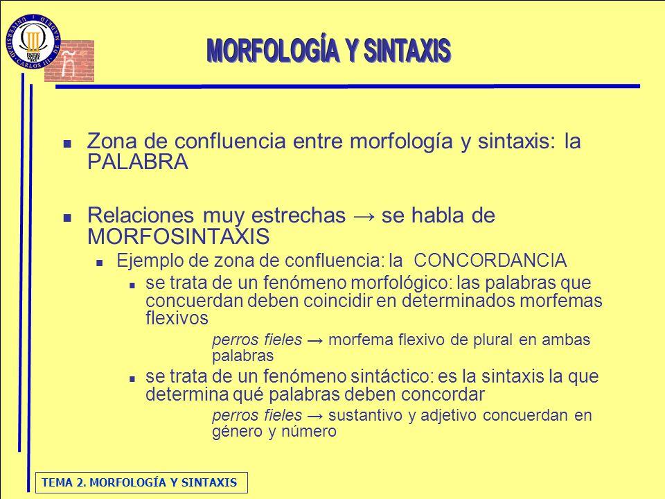 Zona de confluencia entre morfología y sintaxis: la PALABRA