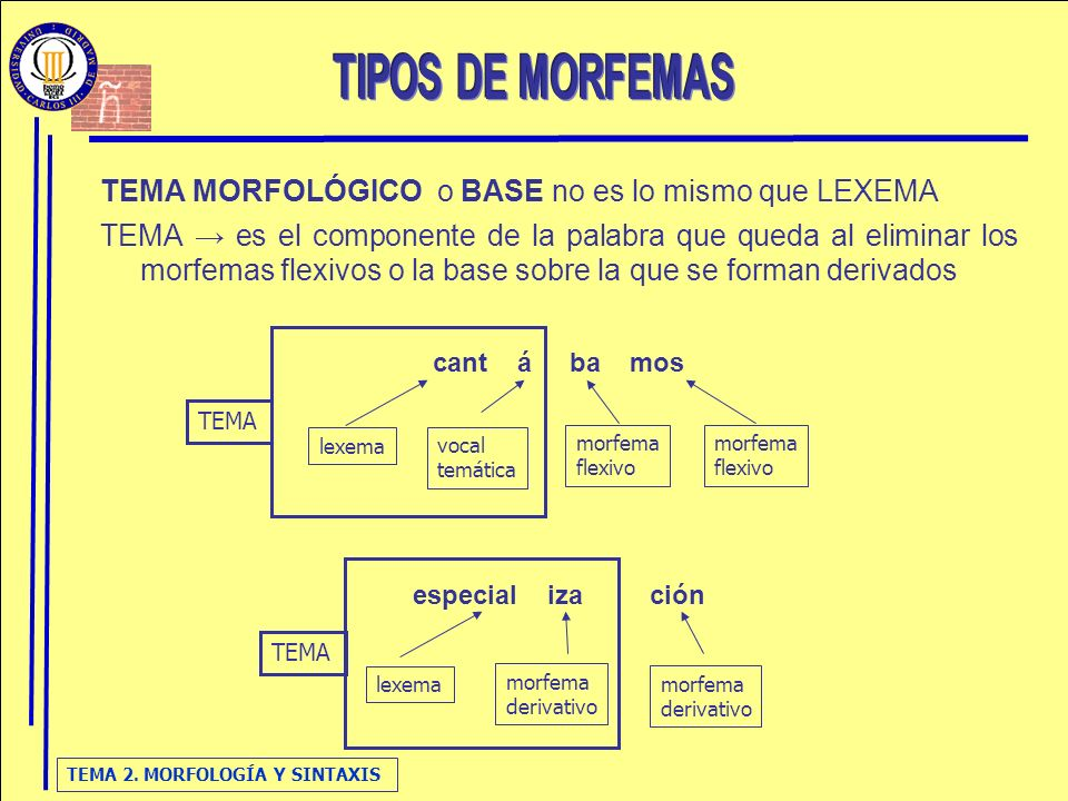 TIPOS DE MORFEMAS TEMA MORFOLÓGICO o BASE no es lo mismo que LEXEMA