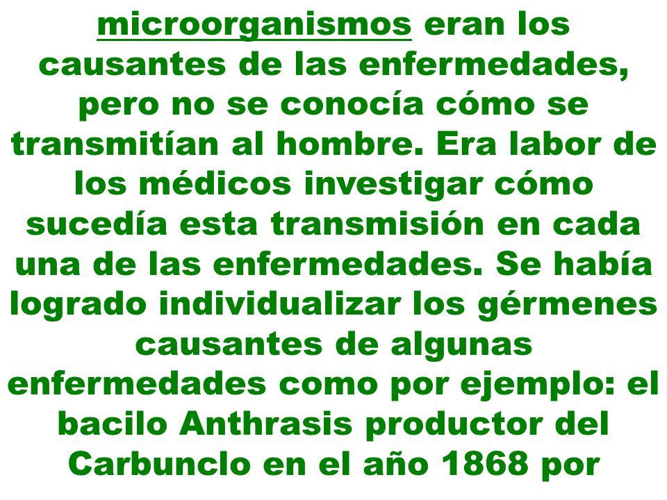 microorganismos eran los causantes de las enfermedades, pero no se conocía cómo se transmitían al hombre.