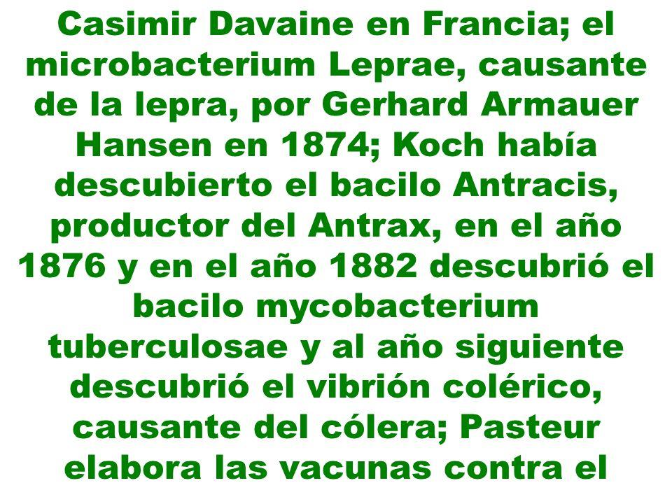 Casimir Davaine en Francia; el microbacterium Leprae, causante de la lepra, por Gerhard Armauer Hansen en 1874; Koch había descubierto el bacilo Antracis, productor del Antrax, en el año 1876 y en el año 1882 descubrió el bacilo mycobacterium tuberculosae y al año siguiente descubrió el vibrión colérico, causante del cólera; Pasteur elabora las vacunas contra el