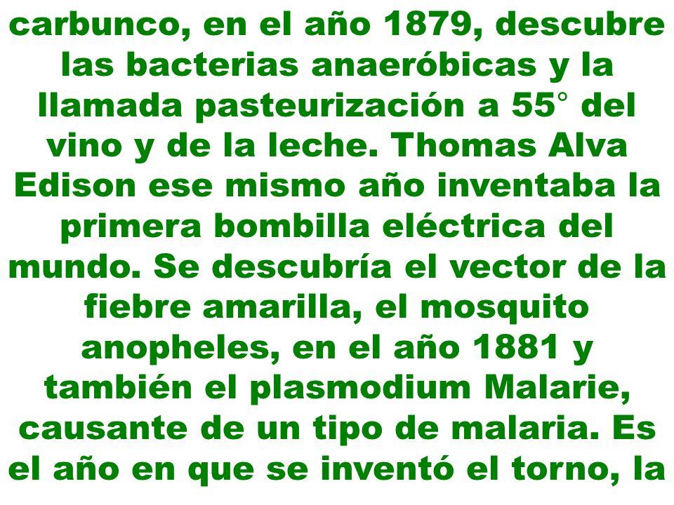 carbunco, en el año 1879, descubre las bacterias anaeróbicas y la llamada pasteurización a 55° del vino y de la leche.