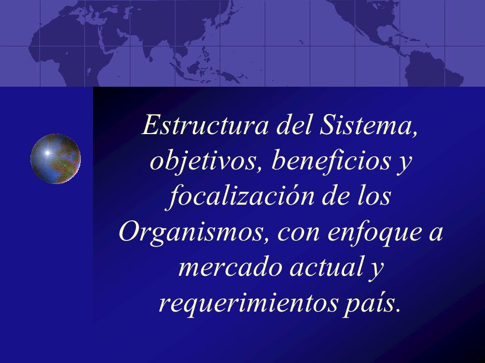 Estructura del Sistema, objetivos, beneficios y focalización de los Organismos, con enfoque a mercado actual y requerimientos país.