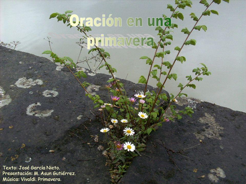 Oración en una primavera