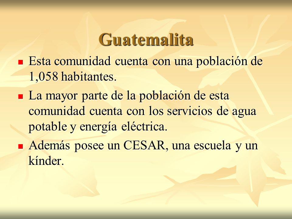 Guatemalita Esta comunidad cuenta con una población de 1,058 habitantes.
