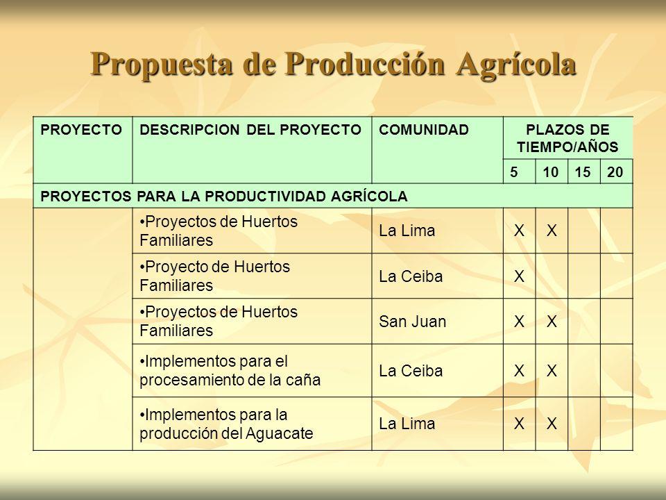 Propuesta de Producción Agrícola