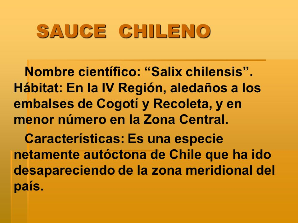 SAUCE CHILENO
