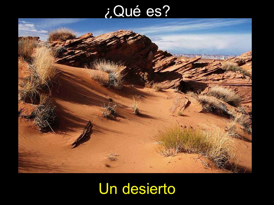¿Qué es Un desierto