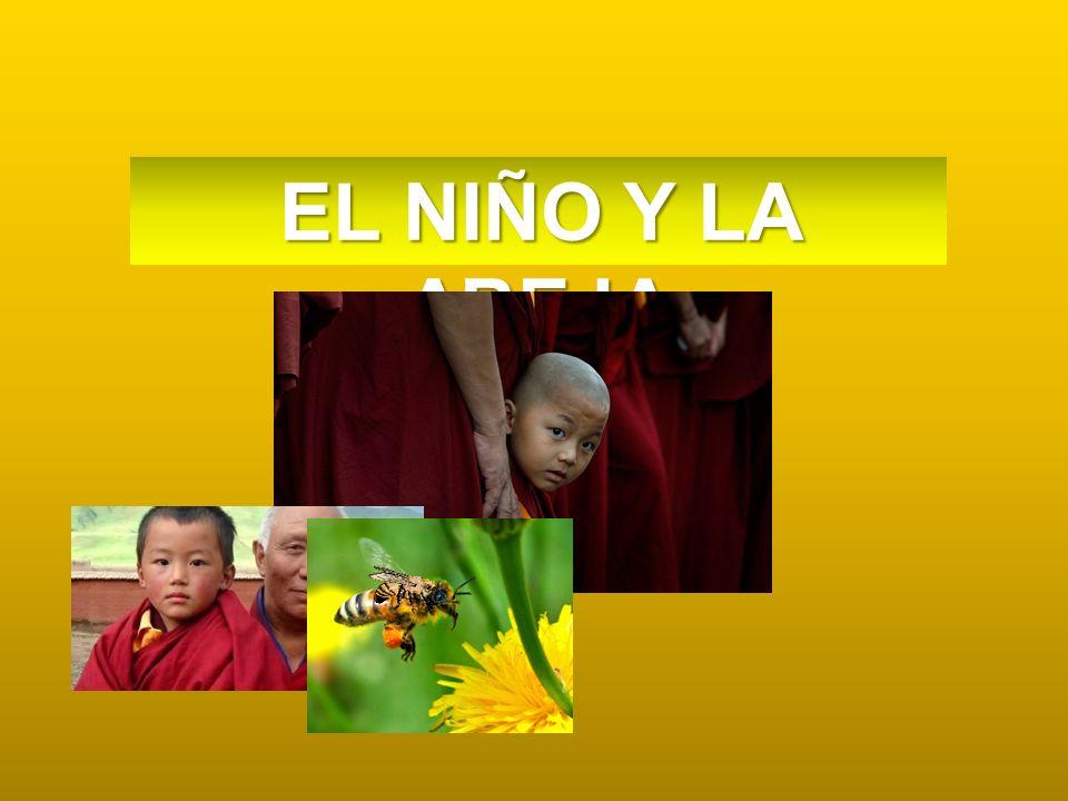 . EL NIÑO Y LA ABEJA