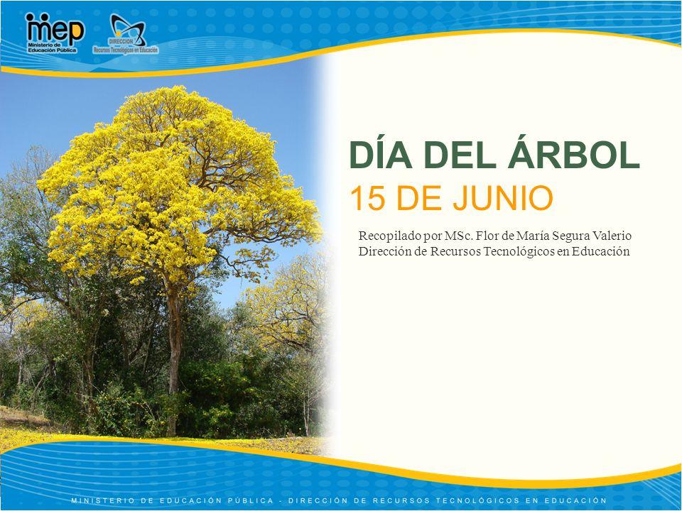 DÍA DEL ÁRBOL 15 DE JUNIO Recopilado por MSc. Flor de María Segura Valerio.