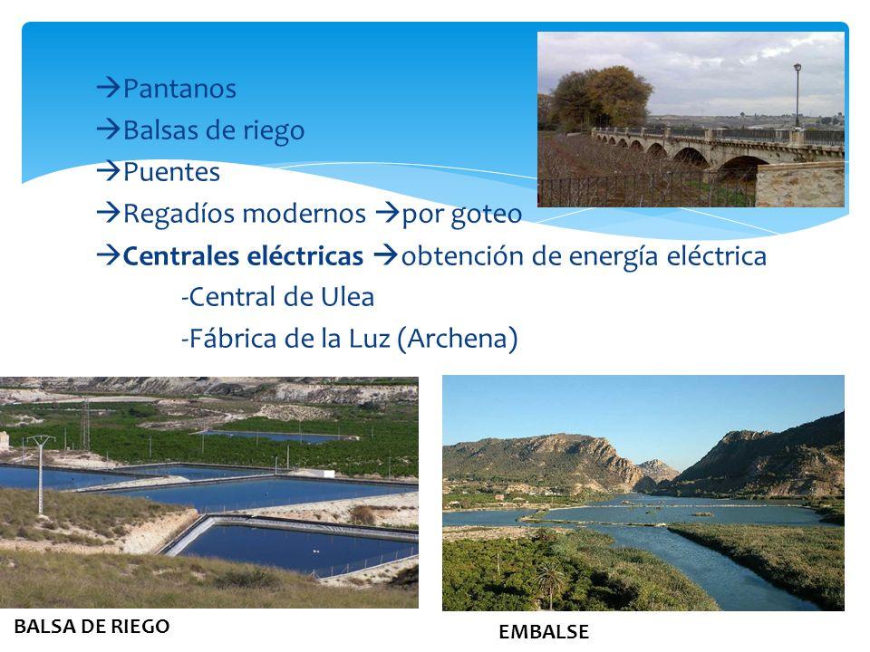 Pantanos Balsas de riego Puentes Regadíos modernos por goteo Centrales eléctricas obtención de energía eléctrica -Central de Ulea -Fábrica de la Luz (Archena)