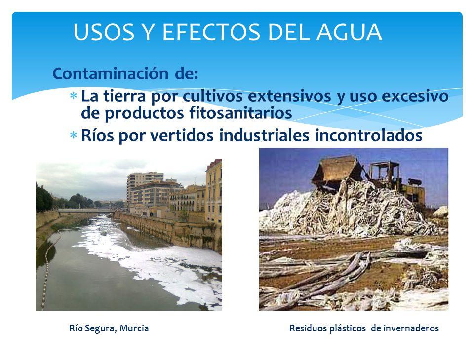 USOS Y EFECTOS DEL AGUA Contaminación de: