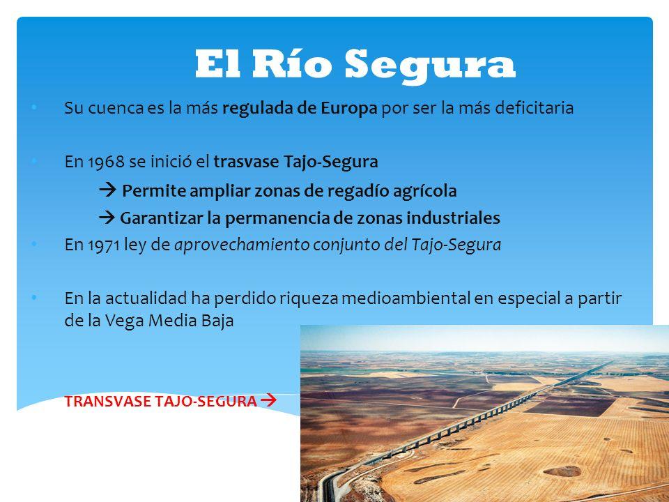 El Río Segura  Permite ampliar zonas de regadío agrícola