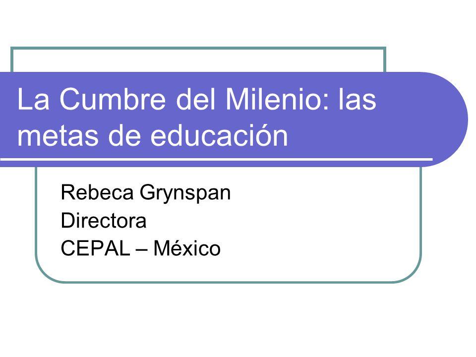 La Cumbre del Milenio: las metas de educación