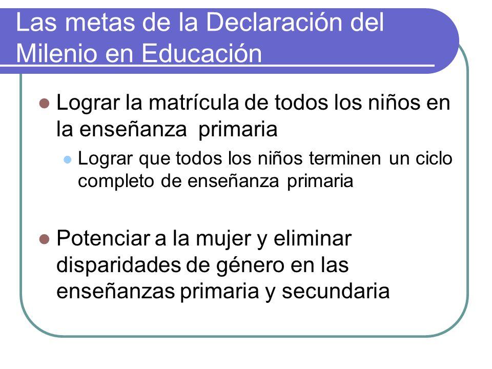 Las metas de la Declaración del Milenio en Educación