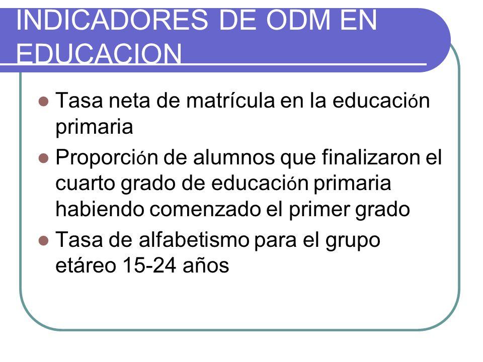 INDICADORES DE ODM EN EDUCACION