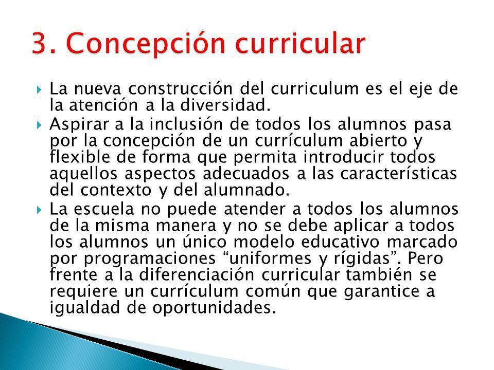 3. Concepción curricular