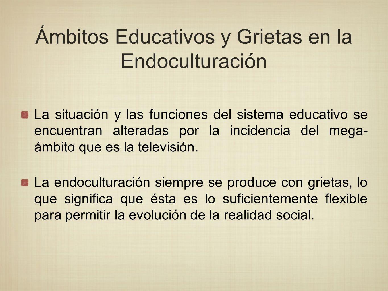 Ámbitos Educativos y Grietas en la Endoculturación